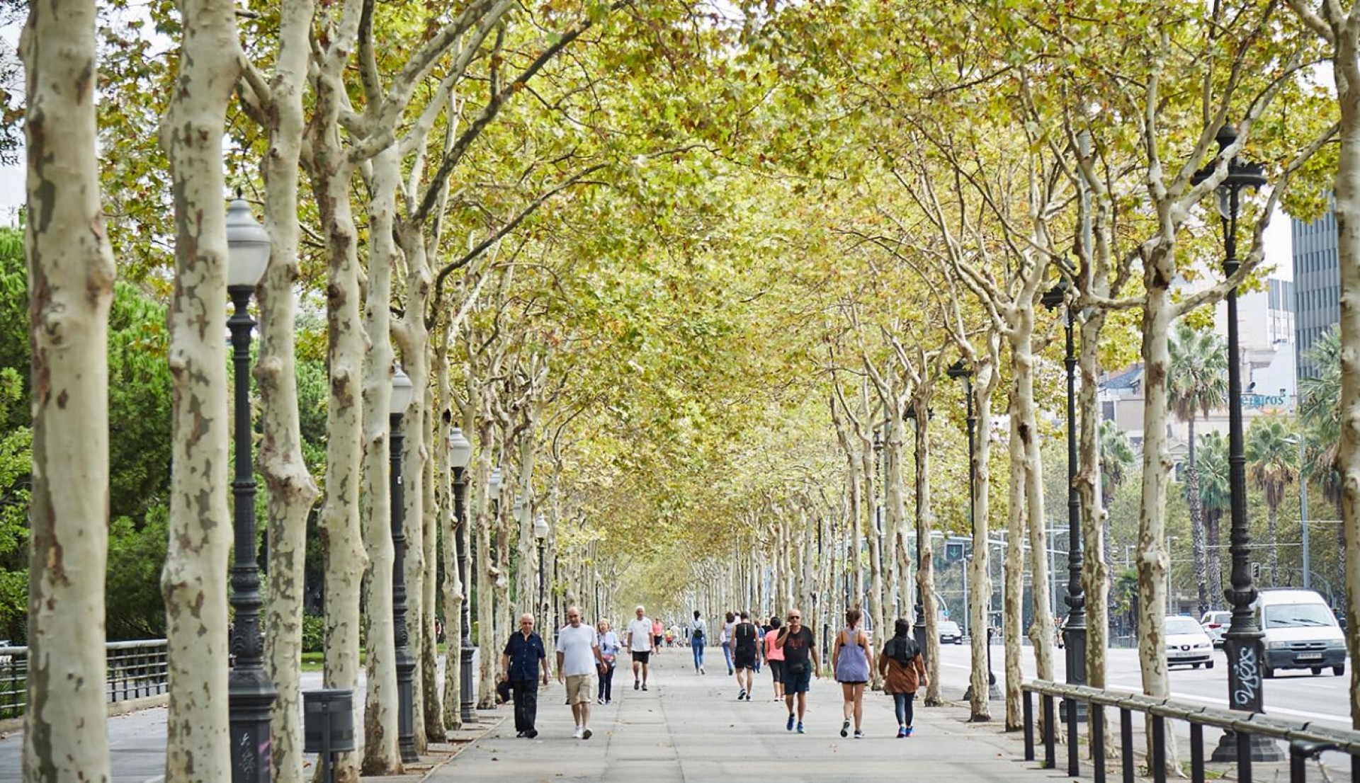 Avenue Diagonal